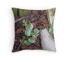 From the compost Throw Pillow