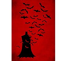Rise of  the bats Photographic Print