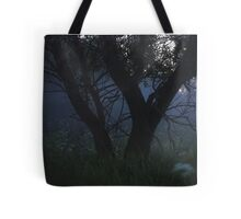Dusk and mystical field Tote Bag