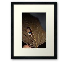 Blue eyed nature girl Framed Print