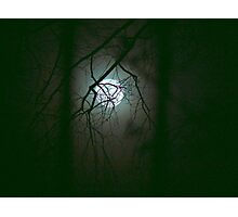 Moonlit Mystery Photographic Print