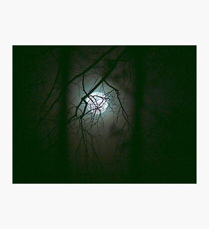 Moonlit Mystery Photographic Print