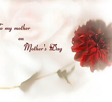 To my mother on Mother's Day by missmoneypenny