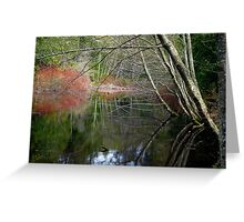 On San Juan Pond Greeting Card