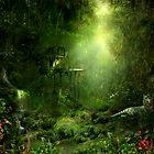 The jungle by Lilla Márton