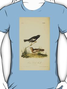 James Audubon Vector Rebuild - The Birds of America - From Drawings Made in the United States and Their Territories V 1-7 1840 - Prarie Lark Finch T-Shirt