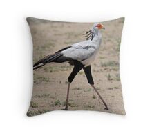 Secretary Bird, Serengeti National Park, Tanzania, Africa Throw Pillow