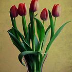 five tulips by Angel Warda