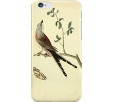 James Audubon Vector Rebuild - The Birds of America - From Drawings Made in the United States and Their Territories V 1-7 1840 - Swallow Tailed Flycatcher iPhone Case/Skin