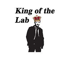 Hodgin's - Bones King of the lab Photographic Print