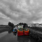 Sequana   Beverley Canal by Sarah Couzens