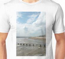 Solitary Seagull Unisex T-Shirt