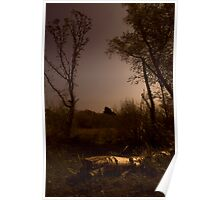 Freshwater Nature Reserve Poster