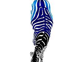 Hued Zebra by createdtocreate