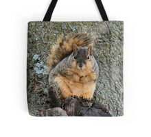 I'm not fat! This is winter fur! Tote Bag