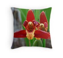 Orchid, Everglades National Park, Florida Throw Pillow
