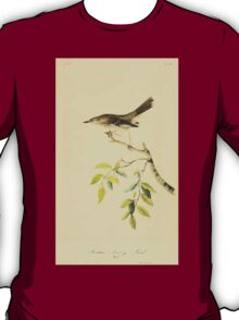James Audubon Vector Rebuild - The Birds of America - From Drawings Made in the United States and Their Territories V 1-7 1840 - Mountain Mocking Bird T-Shirt