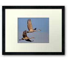 A Loving Couple in Flight Framed Print