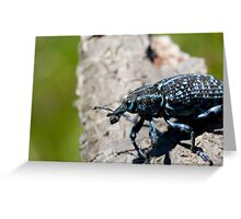 Aliens Exist Pt.2 Greeting Card