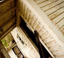 Back Door by Susan Gottberg