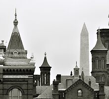 The Smithsonian Museum Washington D.C. by Matsumoto