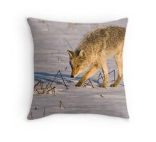 Prowling Around Throw Pillow