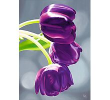 Purple Tulips II. - Oil painting Photographic Print