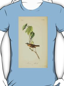 James Audubon Vector Rebuild - The Birds of America - From Drawings Made in the United States and Their Territories V 1-7 1840 - Morten's Finch T-Shirt