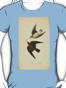 James Audubon Vector Rebuild - The Birds of America - From Drawings Made in the United States and Their Territories V 1-7 1840 - Rough Winged Swallow T-Shirt