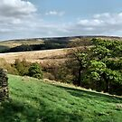 Holmfirth by Sarah Couzens