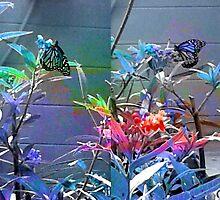 Monarch Butterfly Pouch by Ellen Turner