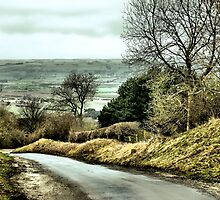West Heslerton by Sarah Couzens