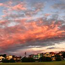 Dudley Page Reserve pano by andreisky