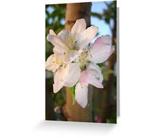 Blossom Cluster Greeting Card