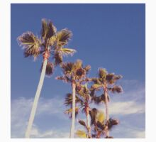 Palms by trendystickers
