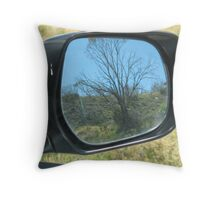 a vision in the mirror Throw Pillow