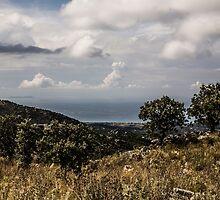 Corfu Coast by wilsonqc
