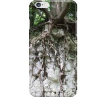Erosion iPhone Case/Skin
