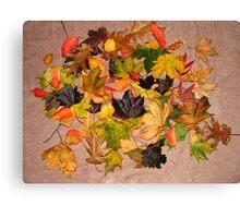 Brilliant, Autumn / Fall Canvas Print