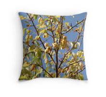 Ripe apples Throw Pillow