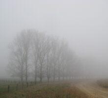 Oaks in the mist. by enumerart