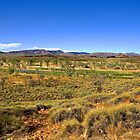 West MacDonnell Ranges - Mt Sonder Valley by idphotography