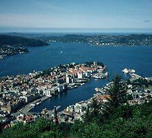 From Funicular 1000 above Bergen Norway 198406110010m by Fred Mitchell