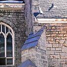 All Saint's Anglican Church - Ottawa, ON Canada by Shulie1
