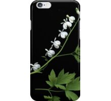 April Dicentra iPhone Case/Skin