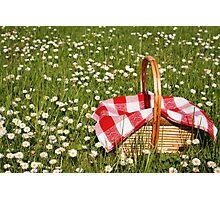 Picnic basket  Photographic Print