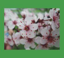 Crabapple Blossoms Kids Tee