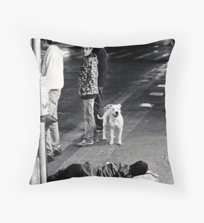 even the dog cant look away Throw Pillow