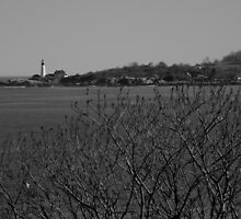 Portand Head Light ~ Part Two by artisandelimage