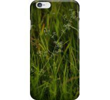 Hidden Blossoms iPhone Case/Skin